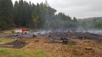 23.04. 2019 Požár lesa, pád stromu