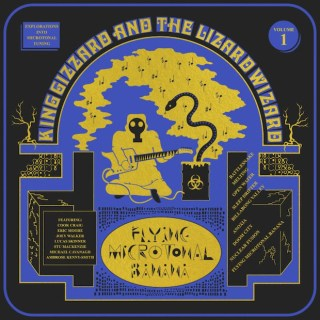 "News Added Nov 12, 2016 King Gizzard & the Lizard Wizard is an Australian psych rock band.""Flying Microtonal Banana"" will be the a band's ninth album. It's the band's second album within the matter of months; ""Nonagon Infinity"" came out just a while back. In addition, King Gizzard & the Lizard Wizard hope to release […]"