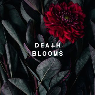 """News Added May 11, 2017 Death Blooms is a Metalcore band that formed in 2016 consisting of members both from Liverpool and the Manchester area of the UK. The guys in Death Blooms will be releasing their debut EP, which is preceded by their debut single """"I'm Dead"""", which you can watch below. The self […]"""