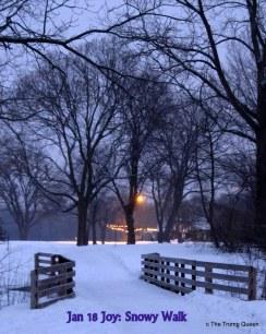 Jan 18 Joy: Snowy Walk in the Park