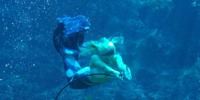Mermaid image by George via Flickr CC license