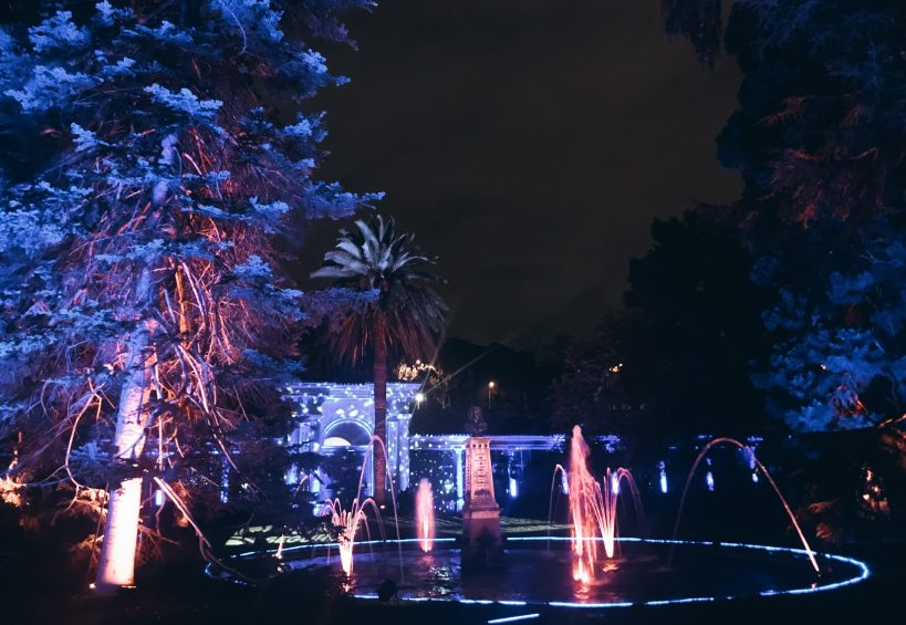 Naturaleza Encendida en el Jardín Botánico