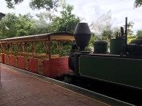 Bally Hooley Steam Train Port Douglas