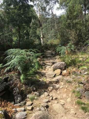 Eurobin Falls trail rock steps