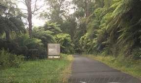 Skinny Windy Road to Tarra Falls