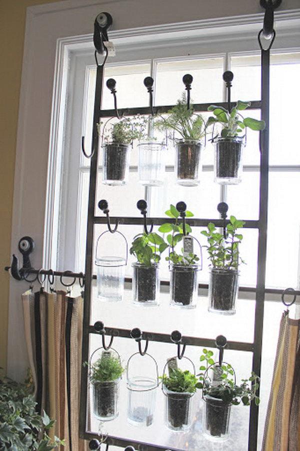 Hanging Hooks Indoor Plant