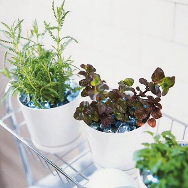 Indoor Planter Box