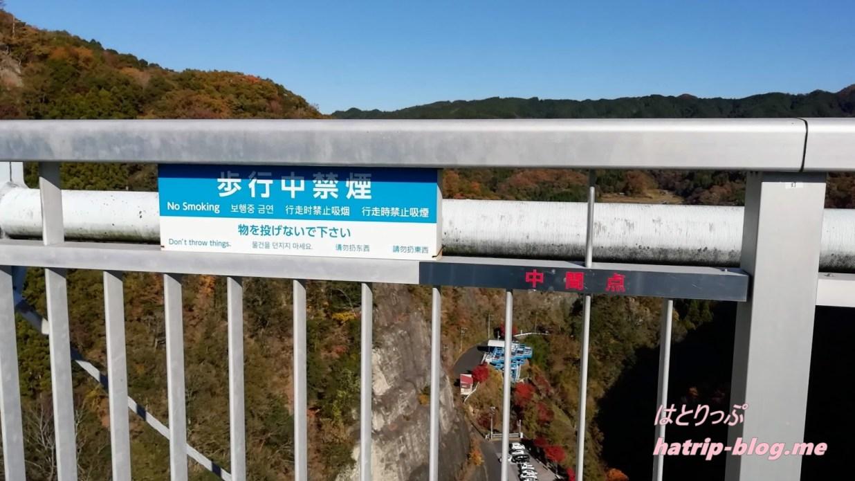 茨城県常陸太田市 竜神峡・竜神大吊橋 中間点