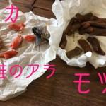 手作りハムを日常へ・魂の料理人の燻製教室