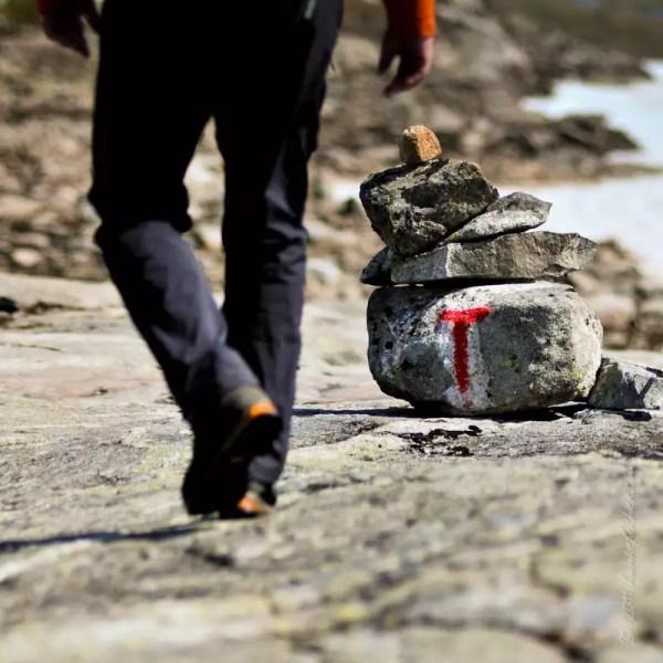 le 'T' rouge du DNT (Den Norske Turistforening - Fédération norvégienne des clubs alpins et de montagne) marque les sentiers