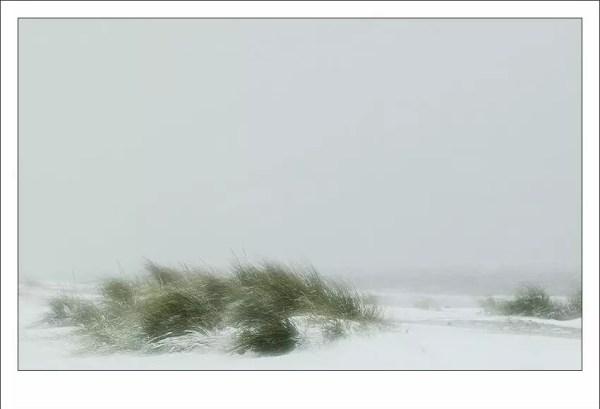 dunes dans la tempête