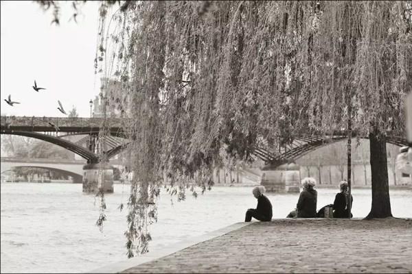 La Place du Vert Galant vis-à-vis du Pont des Arts est un  bien endroit pour rêver