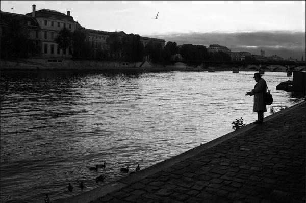 appâter les canards de la Seine. Port des Saints-Pères.