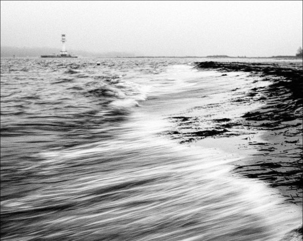 le moustache des vagues
