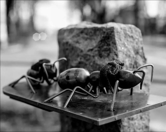 « Die Ameisen » - Skulptur an der Ecke Elbchaussee / Liebermannstrasse, Hamburg