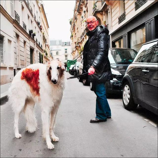 en promener le chien