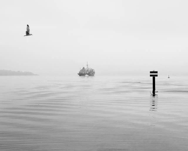Kiel Fjord en toute sérénité