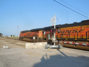 DSCN4066