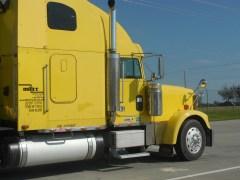 Florida Fall Produce Shipments: Citrus and Veggies