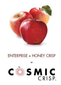 cosmiccrisp