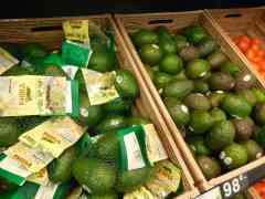 Columbian Hass Avocados; Maersk Container Launches Cold Chain Energy Meter