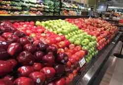 Study Shows Fewer, but Larger Produce Farming Operations