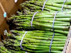 Michigan Asparagus Shippers Report Great Season