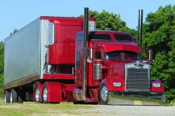 Seasonal Shipping Area Change for California Strawberries is Underway