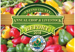 Production Breaks Records in Fresno County for 2018