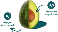 Del Monte Fresh Announces Ties with Apeel to Bring Longer Lasting Avocados