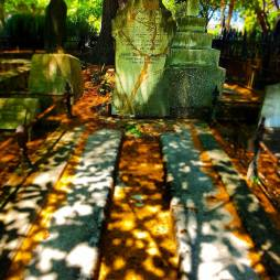 Photo by Sam Collier [Haunted Auckland]