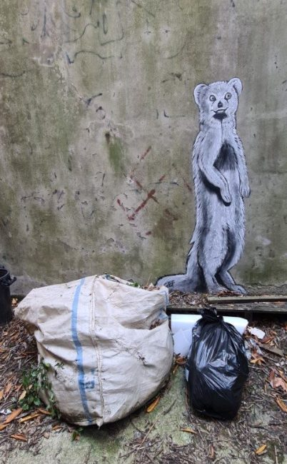 Gef The Talking Mongoose Grafitti Art by Bruce Mahalski – Dunedin