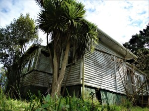 Lonely House – South Auckland