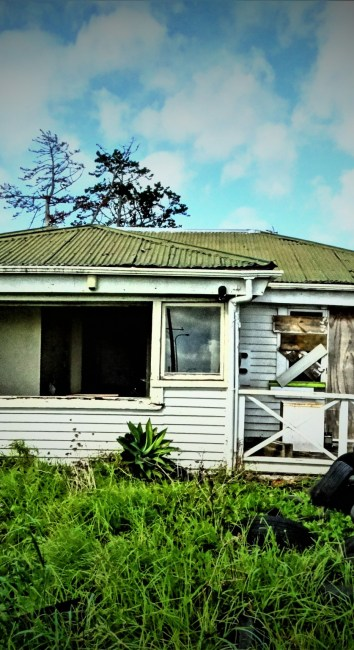 On the tracks – West Auckland