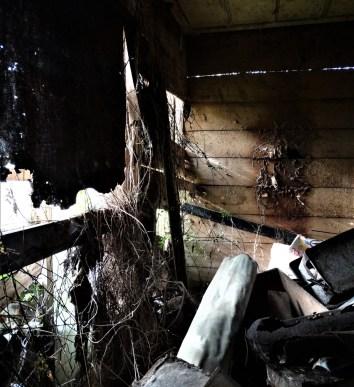 Undisclosed Derelict House / Shack – West Auckland
