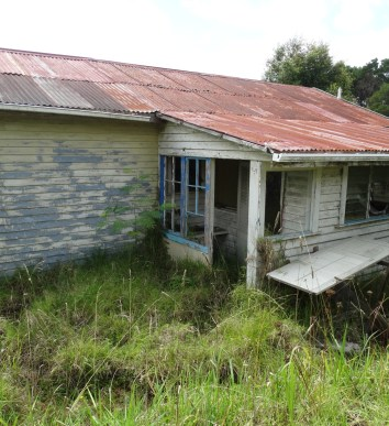 Abandoned farm house – North Shore, Auckland