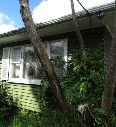 Abandoned house – Auckland