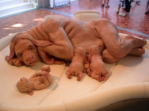 Human-dog hybrid sculpture