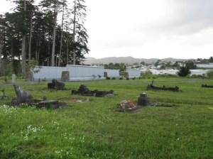 Kioreroa Cemetery 15