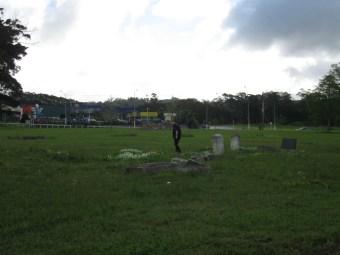 Kioreroa Cemetery 23