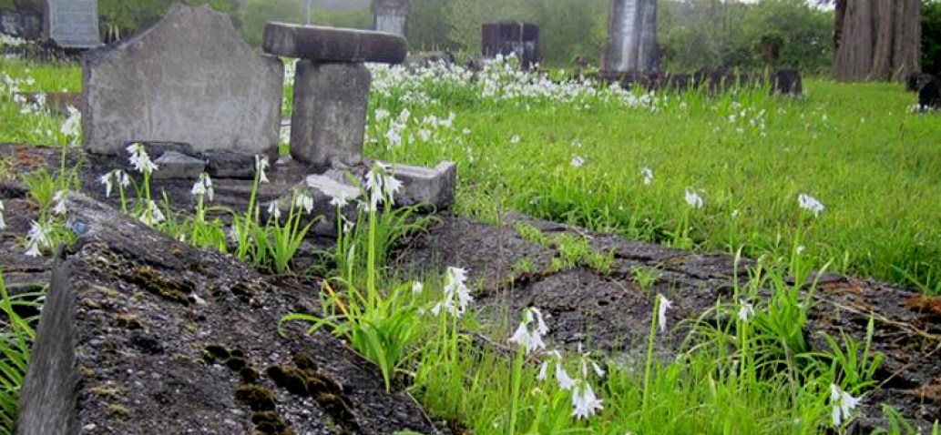 Kioreroa Cemetery