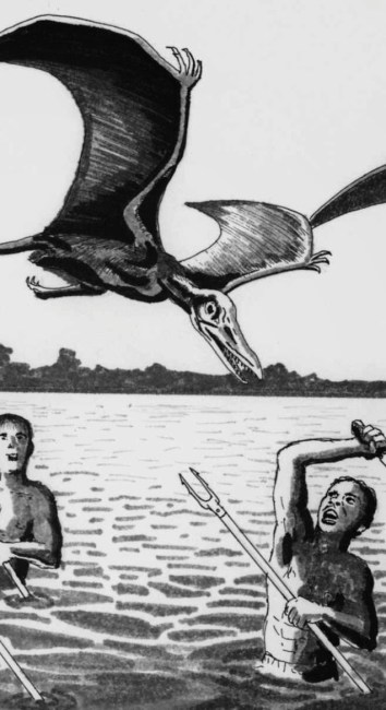 I thought I saw a Terror Saur! – Do Prehistoric flying reptiles still exist?