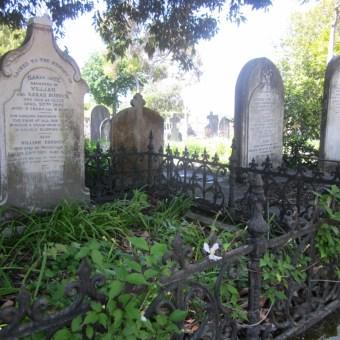 Old Napier Cemetery 02