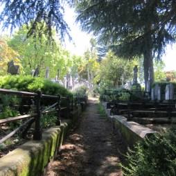 Old Napier Cemetery 04