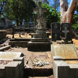 Old Napier Cemetery 09