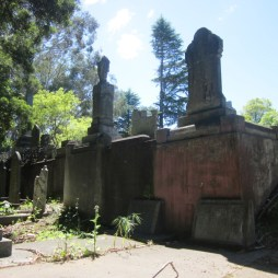 Old Napier Cemetery 10