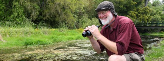 Otter Sightings In Southland