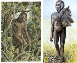 Sumatrans-Orang-Pendek