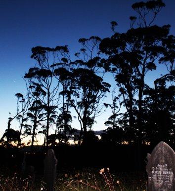Waikumete Cemetery visit