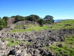 stonefields_07